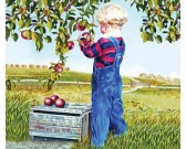 Puzzle Zbieranie jabłek