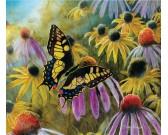 Puzzle Motyl wśród kwiatów