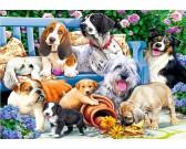 Puzzle Psy w ogrodzie
