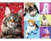 Puzzle Szczęśliwe koty