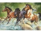 Puzzle Dzikie konie
