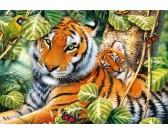 Puzzle Dwa tygrysy