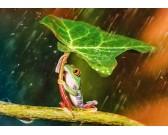 Puzzle Zielony parasol